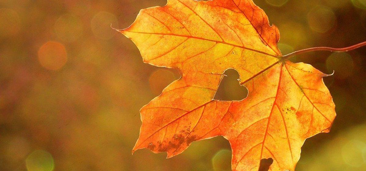 Тест. Угадайте хиты прошлых лет про осень по кадру из клипа