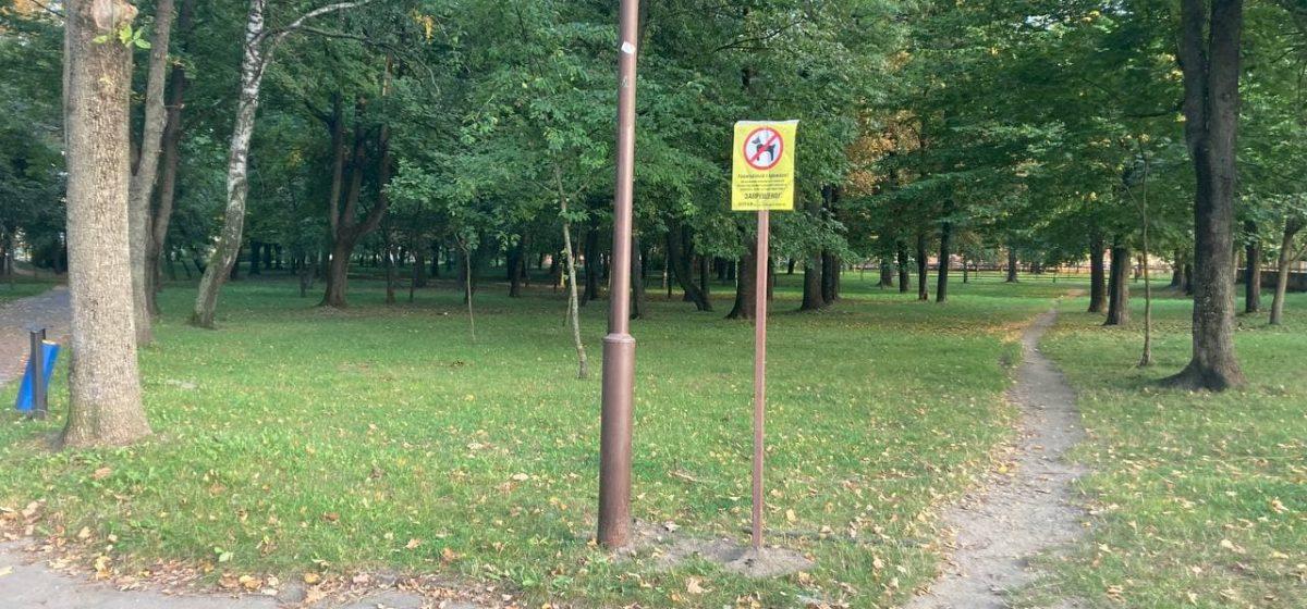 Выгуливать собак запретили в молодом парке в Барановичах. Фотофакт