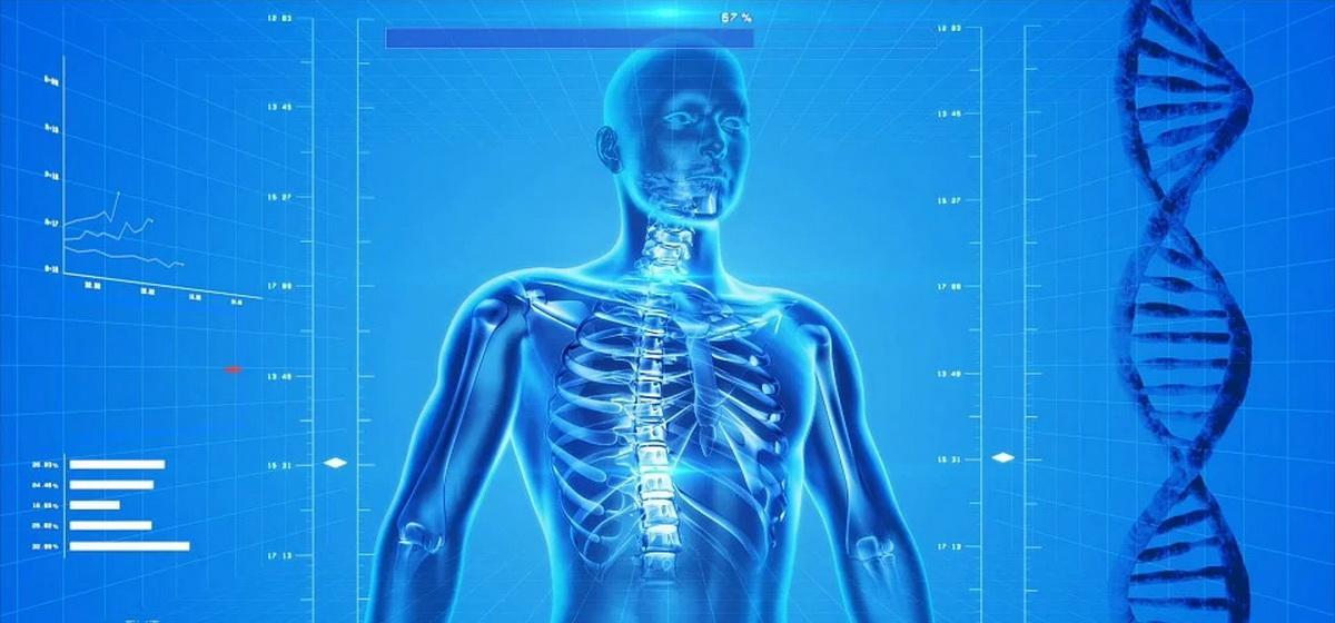 Это интересно. 5 фактов о человеческом теле, которые могут показаться выдумкой
