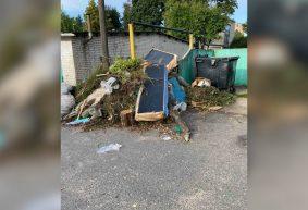 «Открыть окно невозможно, ужасный запах!». Огромная гора мусора образовалась во дворе многоэтажки в Барановичах