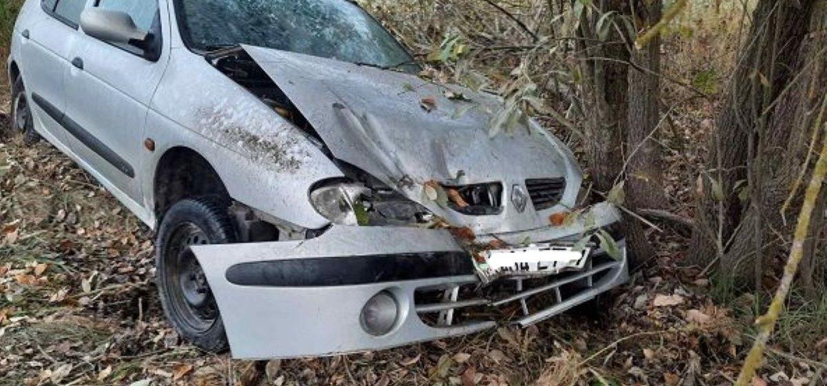 Водитель Renault не справился с управлением, вылетел в кювет и врезался в дерево под Барановичами